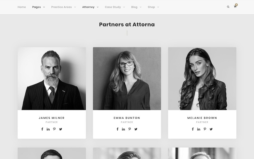 Attorna Law Firm Partners - by kaplanmediagroup.com