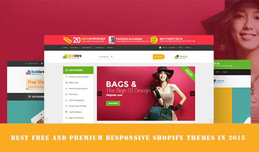 Shopify Theme Bags | We Create Your Shopify Store | kaplanmediagroup.com